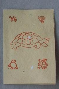 Carte avec des tampons de tortue