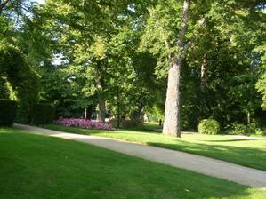 Poitiers, parc de Blossac, le jardin anglais