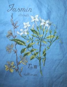 Les cinq premièes étapes du jasmin, SAL études de plantes