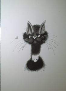 Le chat de Liliane