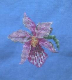 Orchidée brodée su toile bleue