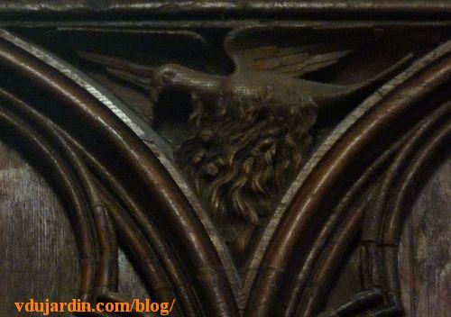 Stalles de la cathédrale de Poitiers, dosseret, phénix