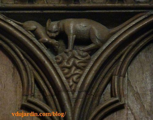 Stalles de la cathédrale de Poitiers, dosseret, un chat attrape une belette