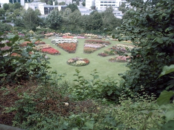 Caen, parc de la colline aux oiseaux, un parterre fleuri