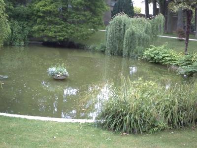 Poitiers, le jardin des plantes, le bassin