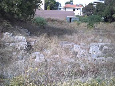 Ruines envahies par la végétation à Rhodes