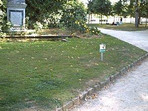 Poitiers parc de Blossac. La pelouse après le feu d'artifice