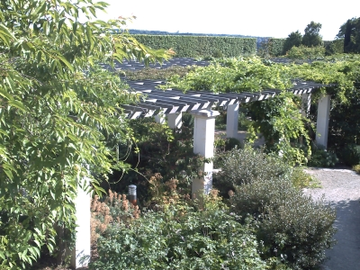 Poitiers parc de Blossac, la pergola