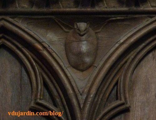 Stalles de la cathédrale de Poitiers, dosseret, chauve-souris