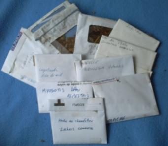 graines reçues de Jean Marie et Marie-Josée