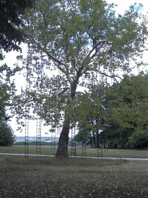 L'arbre aux échelles de François Méchain à Chaumont-sur-Loire