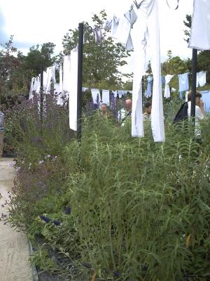 La lessive de fleurs, Chaumont 2009, linge blanc