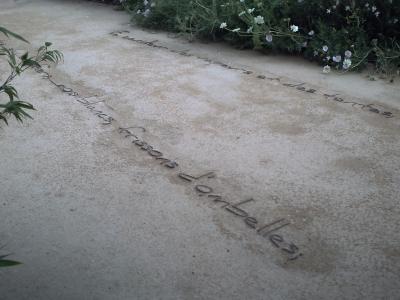 Chaumont 2009, jardin 8, vers au sol