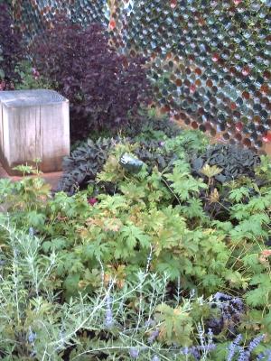 Le jardin n° 16