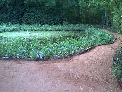 Le jardin n° 19bis