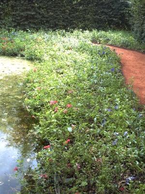 Chaumont 13 on joue dans les jardins bleus le blog de v ronique d - Le jardin des fleurs poitiers ...