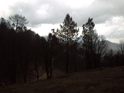 Le col de Saint-Eustache après l'incendie