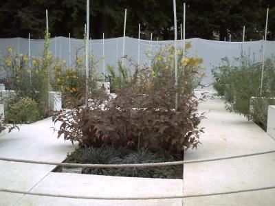 Le jardin n° 1