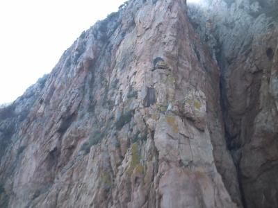 Les calanche, un nid d'aigle pêcheur