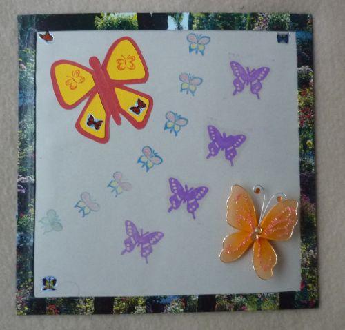 SAL suffit janvier : un cadre aux papillons pour le projet butterfly