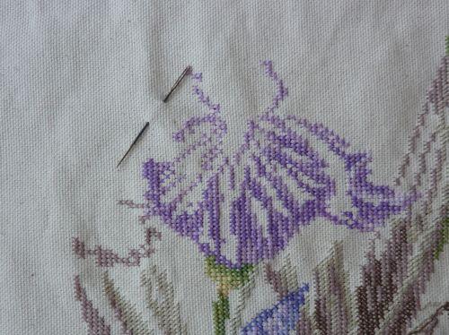 SAL iris, mon avancée de mars : le début de la grande fleur