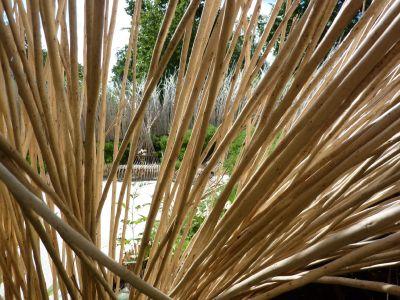 Chaumont-sur-Loire, festival des jardins 2010, le jardin n° 3, Ma terre, Mater, aperçu sur l'intérieur