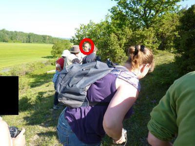Une partie du groupe à la recherche d'orchidées à Civaux