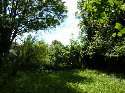 Mon jardin le 5 juin 2010, vu vers la rivière