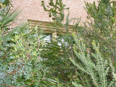 Toulouse, musée Saint-Raymond, façade antérieure, fenêtre 4