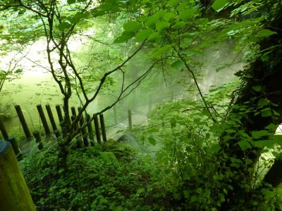 Chaumont-sur-Loire, le festival des jardins 2010, le vallon des brumes, brumisation