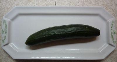 Mon premier concombre