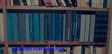 Bleu comme ma bibliothèque