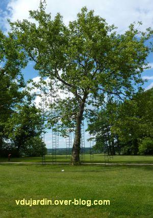 Chaumont-sur-Loire, festival 2010, le parc, 1, l'arbre aux échelles de Méchain