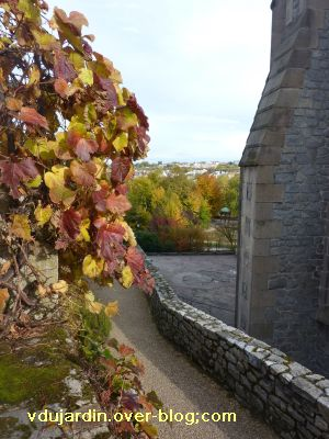 Limoges, le jardin de l'évêché le 31 octobre 2010, vue 3