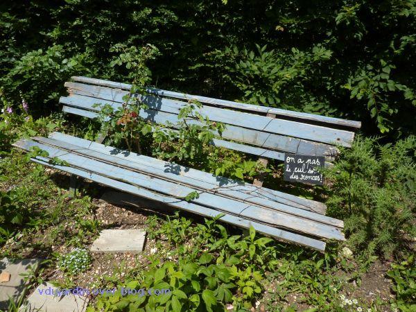 Chaumont-sur-Loire, festival 2010, le jardin 20, 19, le banc envahi par les ronces