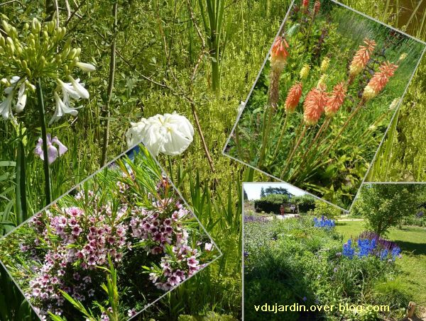 Chaumont-sur-Loire, festival 2010, montage de fleurs...