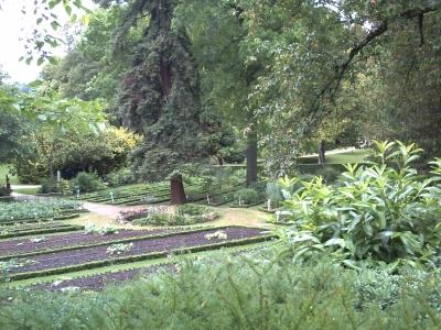 Poitiers, le jardin des plantes, partie botanique