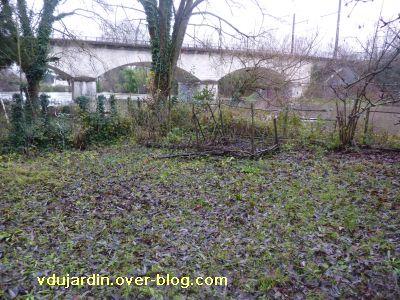 Poitiers, la crue le 24 décembre 2010, 3, mon jardin