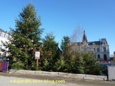 Poitiers, coeur d'agglo, 11 décembre 2010, place d'armes, 4, départ de calèche