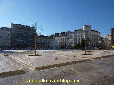 Poitiers, 17 décembre 2010, sophoras plantés place Leclerc