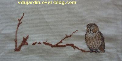 Concours oiseau, étape 1, une chouette sur une branche