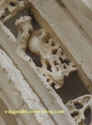 Poitiers, portail de Sainte-Radegonde, rouleau externe, 6, cinquième singe