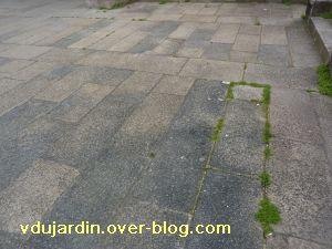 Poitiers, 18 février 2011, trottoir, 06, parvis de Sainte-Radegonde