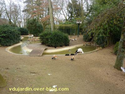 Poitiers, 26 février 2011, défi APN, des nids, 03, cigognes à Blossac