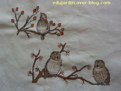 Concours oiseau, étape 3, deux chouettes et un oiseau