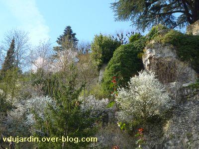 Printemps 2011, 5, colline avec arbres en fleur