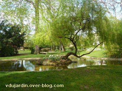Poitiers, 2 avril 2011, 4, pont végétal à Blossac