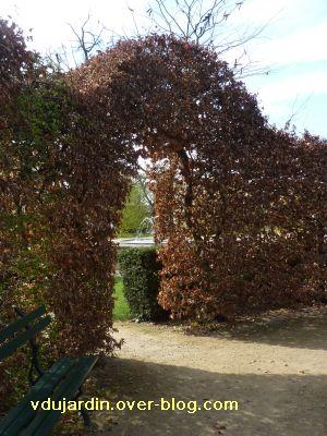 Poitiers, 2 avril 2011, 7, pont végétal avec feuilles mortes