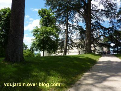 Chaumont-sur-Loire, 1, le château vu de loin depuis le parc