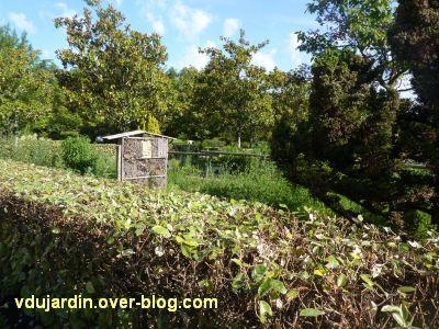 Tours, le jardin des plantes, 10, le jardin des insectes